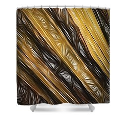 Shower Curtain featuring the photograph Diagonals  ... by Chuck Caramella
