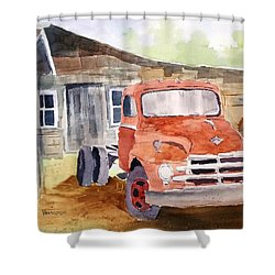 Diamond In The Rough Shower Curtain by Larry Hamilton