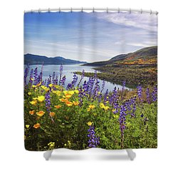 Shower Curtain featuring the photograph Diamond Valley by Tassanee Angiolillo