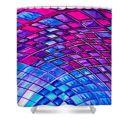 Diamonds And Lines Shower Curtain