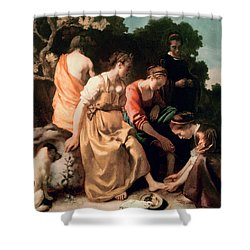 Diana And Her Companions Shower Curtain by Jan Vermeer