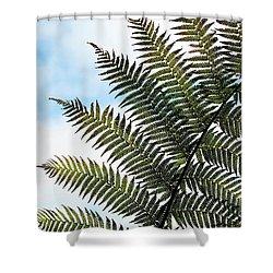 Dicksonia Frond Shower Curtain