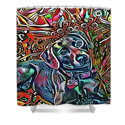 Did Somebody Say Treat? Blue Lacy Dog Shower Curtain
