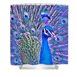 Did You Put Artificial Colors In My Food Shower Curtain by Margaret Bobb