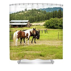 Did You Say Something? Shower Curtain
