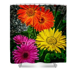 Did You Want Colors Or Flowers Shower Curtain by Steve Fisher
