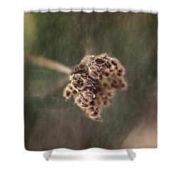Die Reifen Samen Shower Curtain