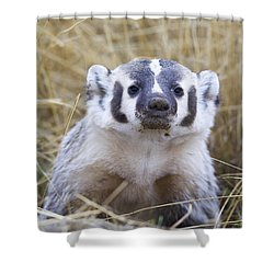 Digger Shower Curtain