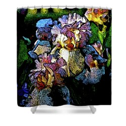 Digital Expressionist Painting Pale Pink Irises 6702 W_4 Shower Curtain