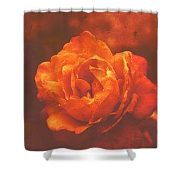 Shower Curtain featuring the digital art Fiery Colored Rose by Fine Art By Andrew David