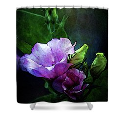 Digital Watercolor Elegance 3700 W_2 Shower Curtain
