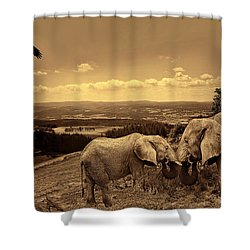 Dignified Rank Shower Curtain by Lourry Legarde