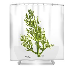 Dill Plant Shower Curtain
