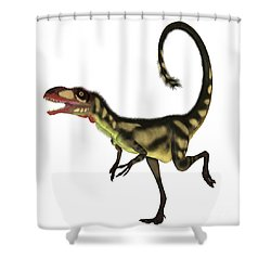 Dilong Dinosaur Profile Shower Curtain by Corey Ford