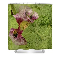 Dimensions Of Bees_flowers Shower Curtain