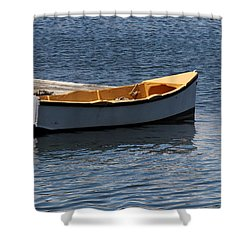 Dingy Shower Curtain