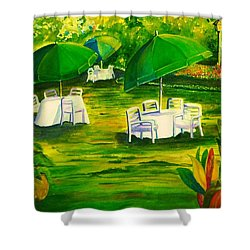 Dining In The Park Shower Curtain