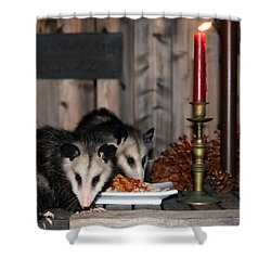 Dining Possums IIi Shower Curtain