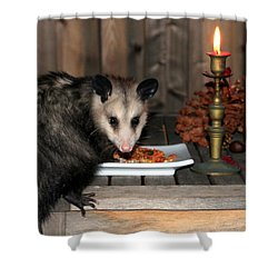 Dining Possums Iv Shower Curtain