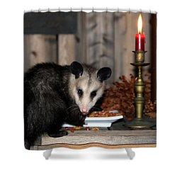 Dining Possums V Shower Curtain