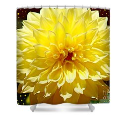 Dinner Plate Dahlia In Starry Sky Shower Curtain