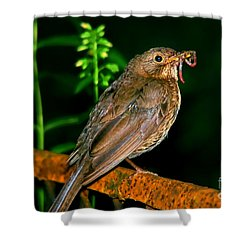 Shower Curtain featuring the photograph Dinner Time  by Mariola Bitner