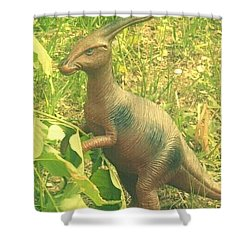Dino Lerk Shower Curtain