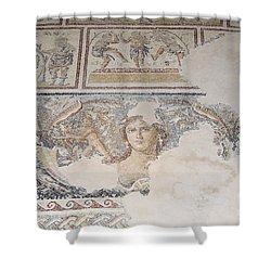 Dionysus Mosaic Mona Lisa Of The Galilee Shower Curtain by Ilan Rosen