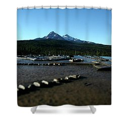 Shower Curtain featuring the photograph Directional Points by Laddie Halupa