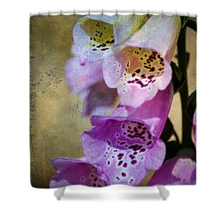 Dirty Belles Shower Curtain by Bill Cannon