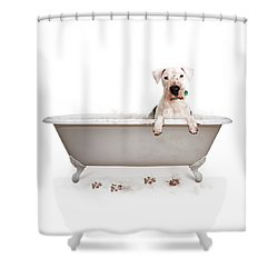 Dirty Muddy Bad Dog Shower Curtain