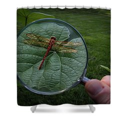 Shower Curtain featuring the photograph Discovery by Mark Fuller