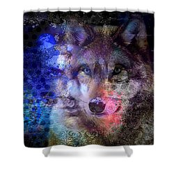 Discovery Of The Path Shower Curtain