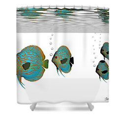 Discus Fish Shower Curtain by Corey Ford