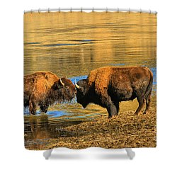 Shower Curtain featuring the photograph Discussing The Crossing by Adam Jewell