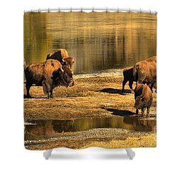 Shower Curtain featuring the photograph Discussing The River Crossing by Adam Jewell