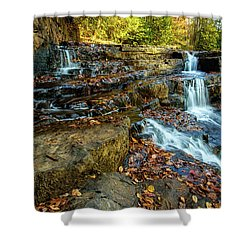 Dismal Creek Falls Horizontal Shower Curtain