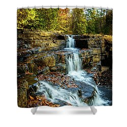 Dismal Falls #3 Shower Curtain