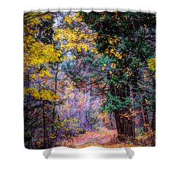 Distant Path Shower Curtain
