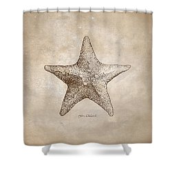 Shower Curtain featuring the drawing Distressed Antique Nautical Starfish by Karen Whitworth