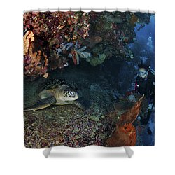 Diver And Sea Turtle, Manado, North Shower Curtain by Mathieu Meur