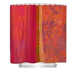 Divided Shower Curtain by Robert Ball