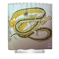 Divine Lung- Earth Shower Curtain