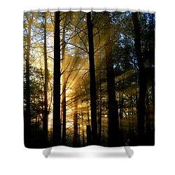 Divine Rays Of Sunshine Shower Curtain