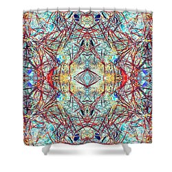 Divinity Of Now Shower Curtain