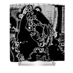 Dixie In Stars Shower Curtain