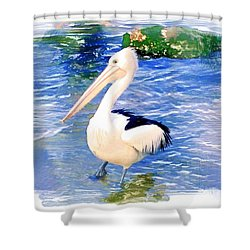 Do-00088 Pelican Shower Curtain