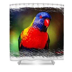 Do-00153 Colourful Lorikeet Shower Curtain
