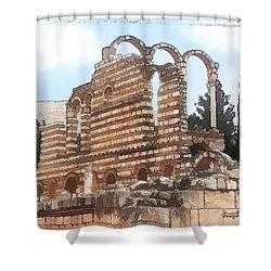 Do-00302 Ruins In Anjar Shower Curtain