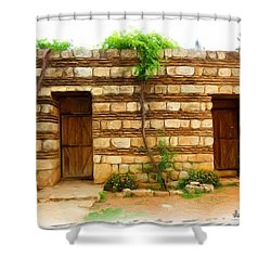 Shower Curtain featuring the photograph Do-00305 Old Hutt In Anjar by Digital Oil